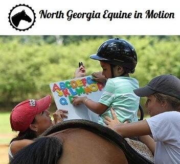 North Georgia Equine in Motion